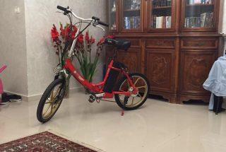 אופני city 20 של גרין בייק למכירה